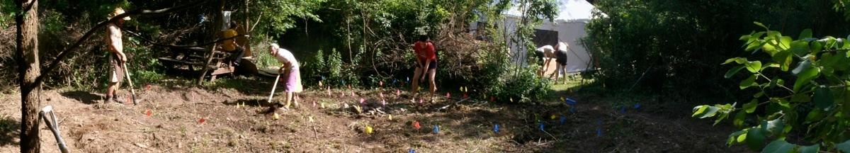 Apprentices tend a new forest garden plot.