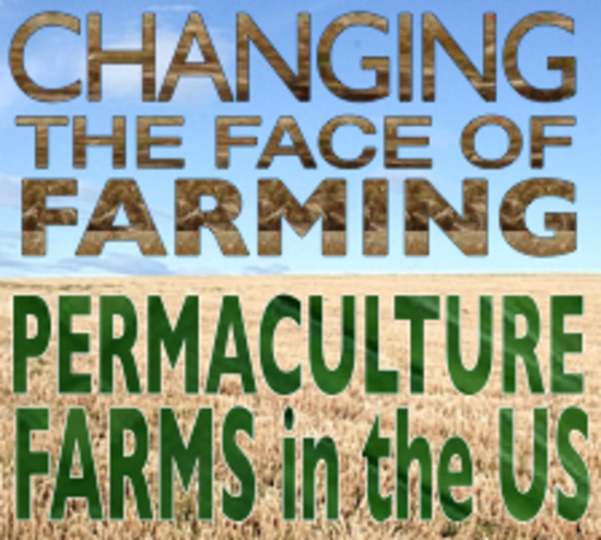 Video Describes Permaculture Farming Research
