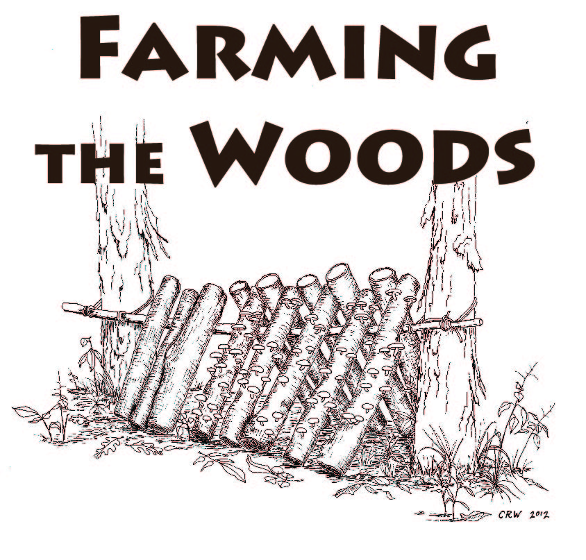 "FLPCI cofounder Steve Gabriel writing ""Farming the Woods"" book (video)"