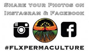 hashtagflxpermaculture