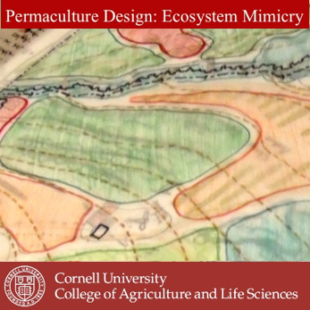Earn your PDC at home with Cornell University