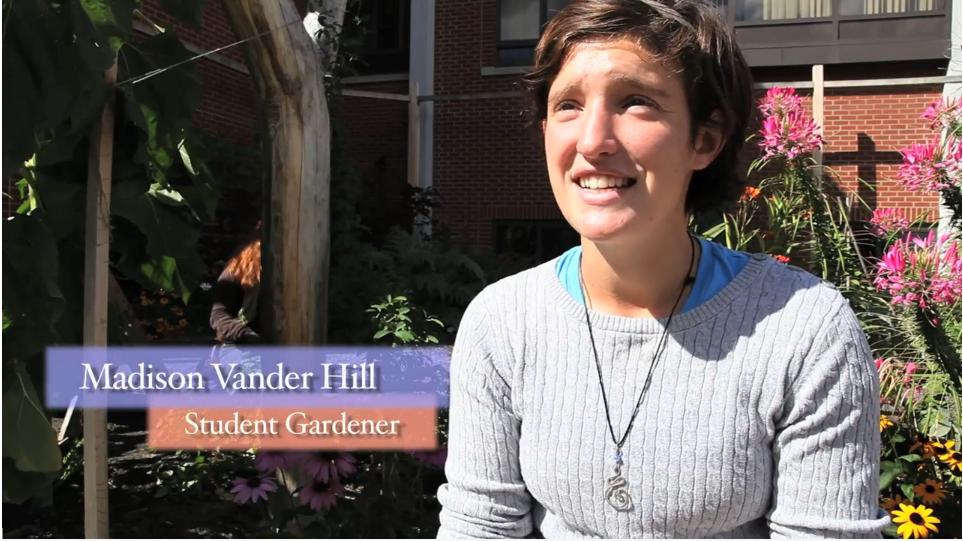 Video Celebrates Ithaca College Permaculture