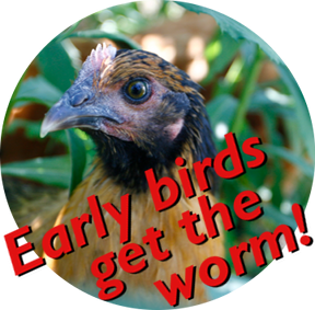 Early Bird Discount for Summer PDC Course