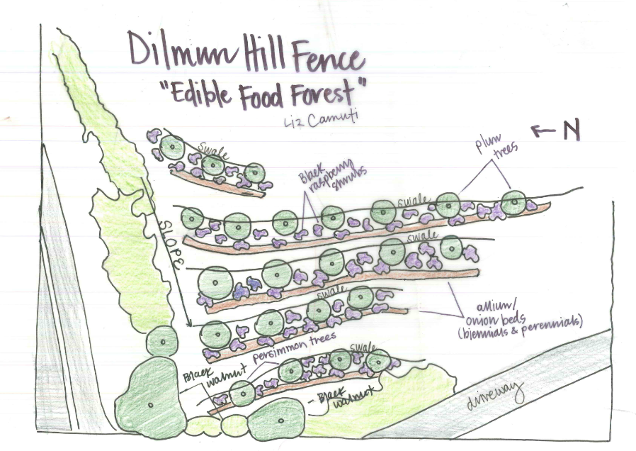 Ivy League Permaculture Flourishes at Cornell University